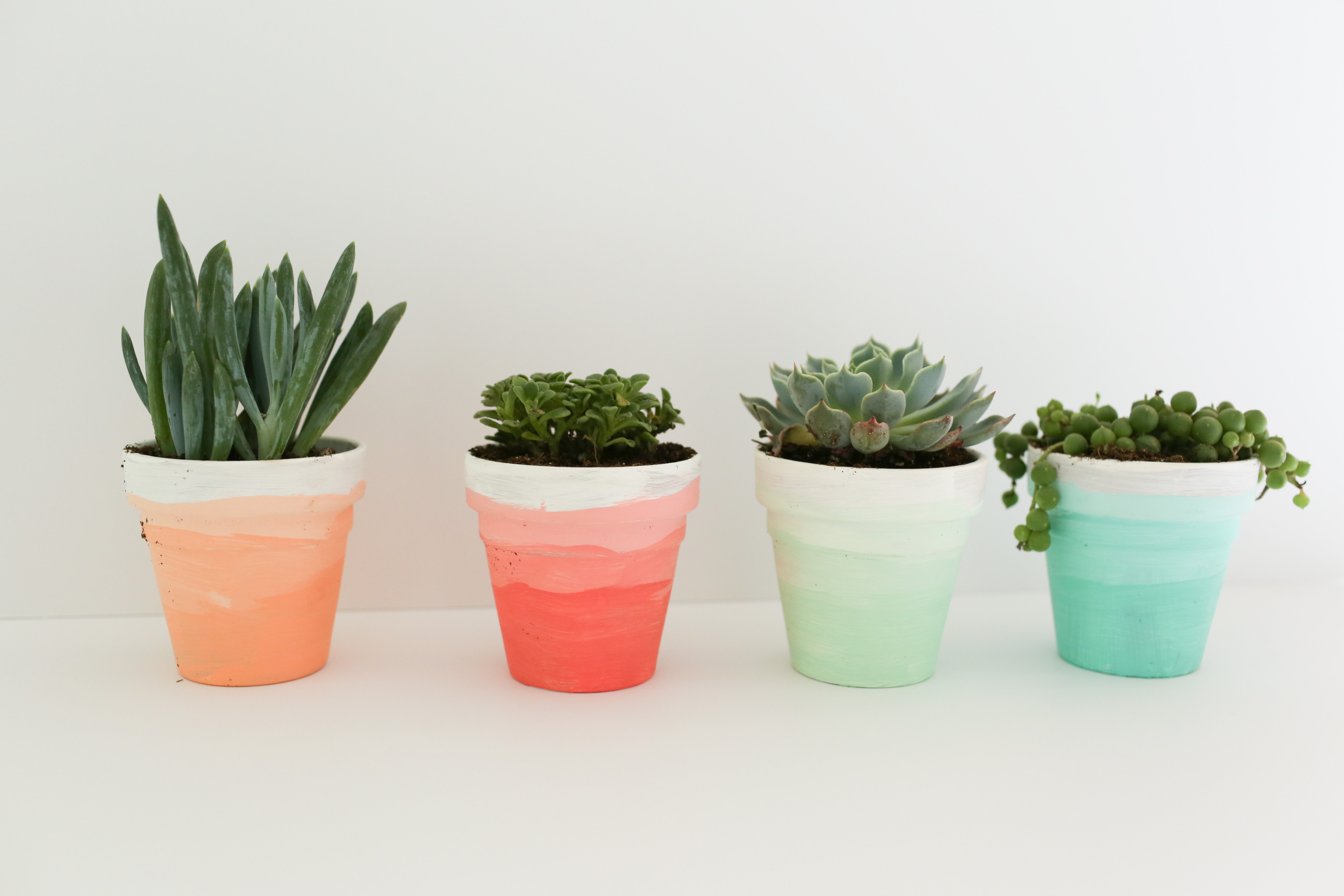 A Mint and Coral Party