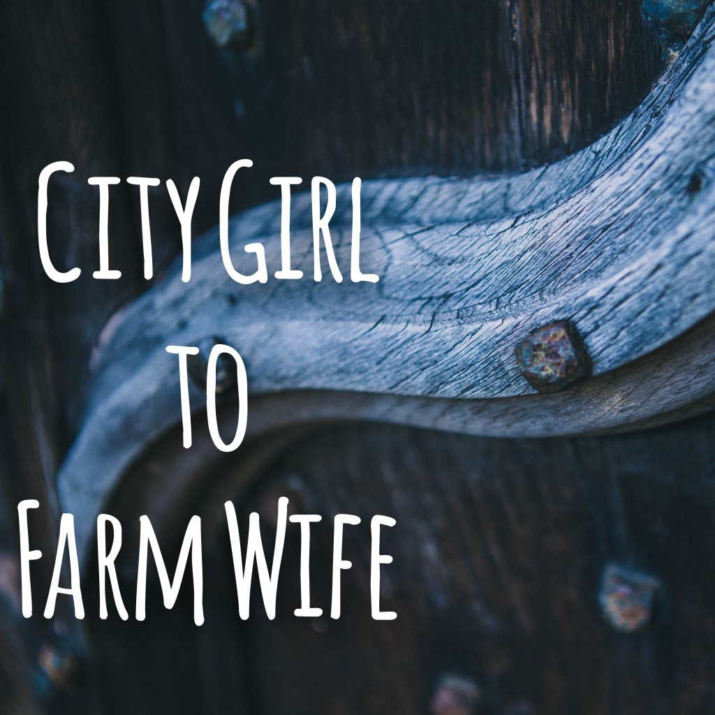 A 31 day series documenting the changes from being a city girl to a farm wife and mom.  www.homestead128.com