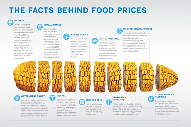 infographic-facts-behind-food-prices-small
