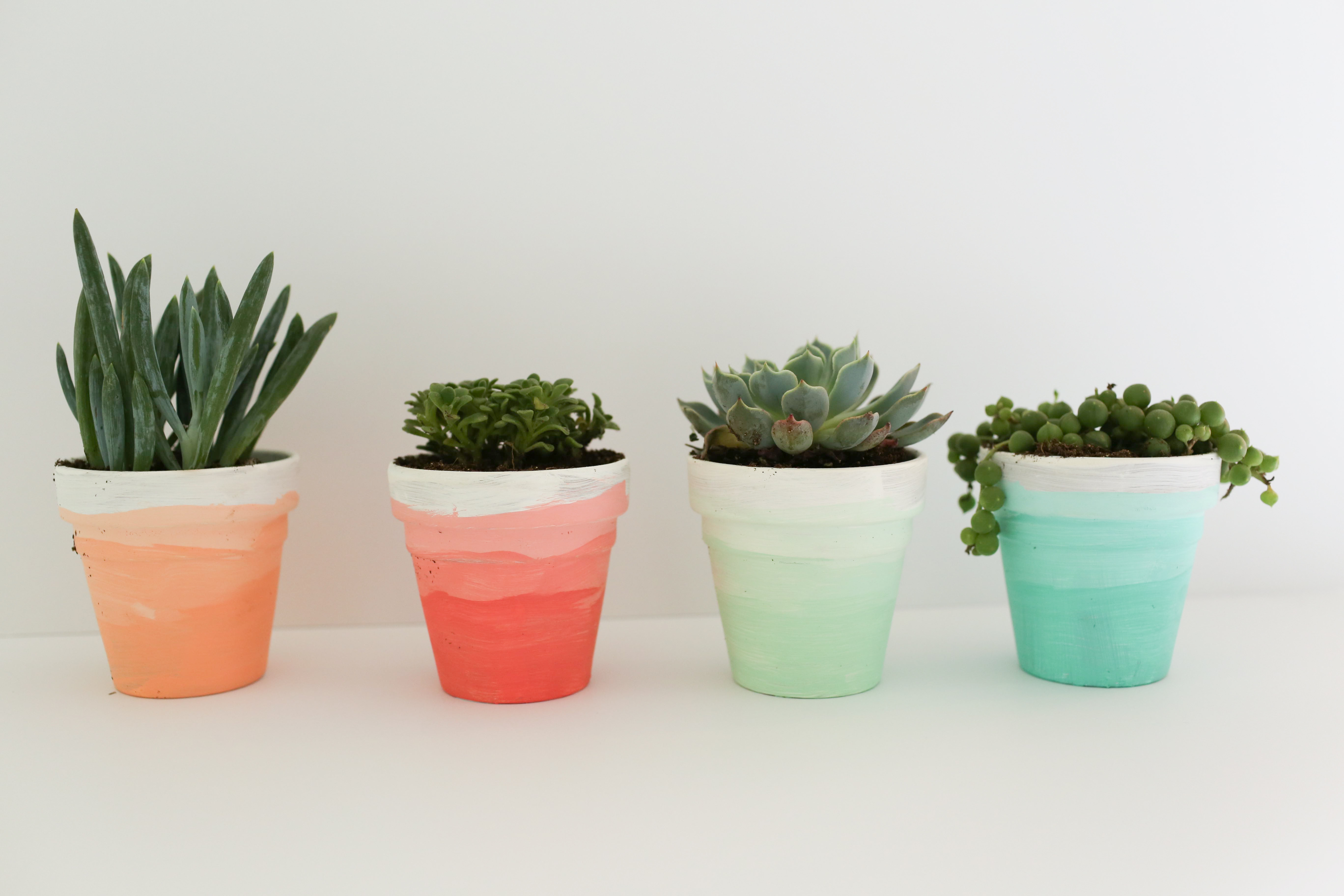 A DIY tutorial that shows you how to create these ombre succulent pots. Perfect for