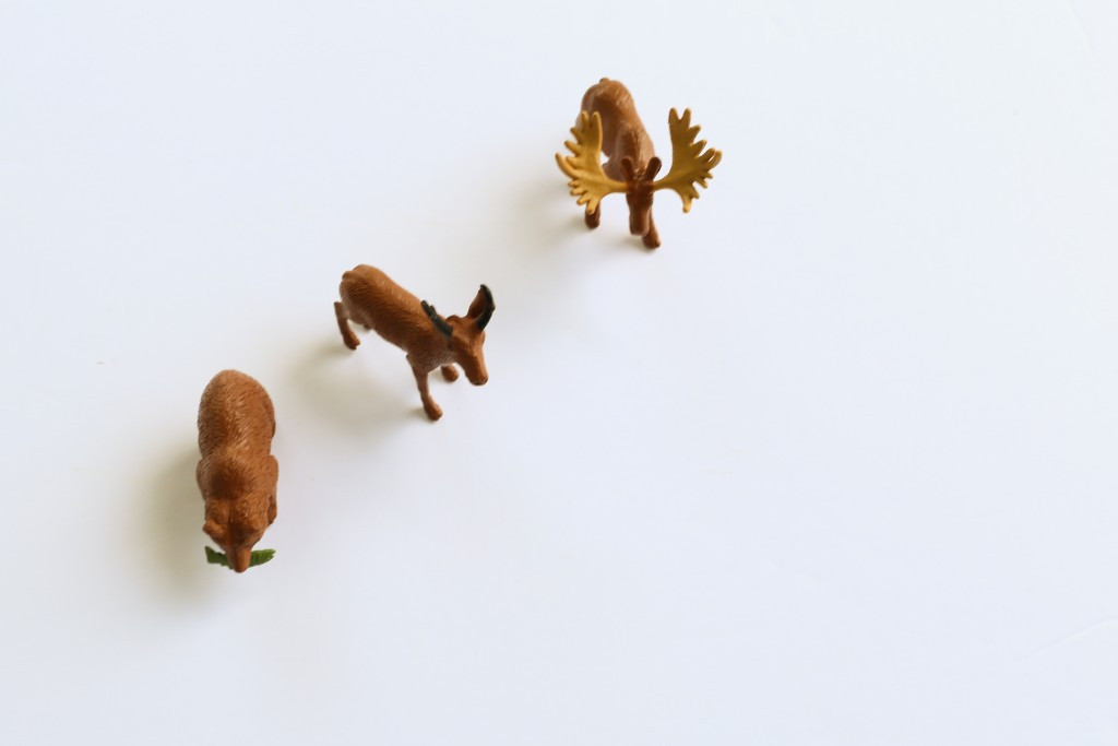 DIY animal cake toppers.  Create animal picks for your cakes and cupcakes.  From The Dempster Logbook.