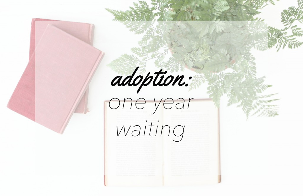 1 year adoption