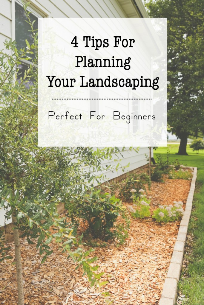 "Tips for planning landscaping, perfect for beginners and those with a ""black thumb""."