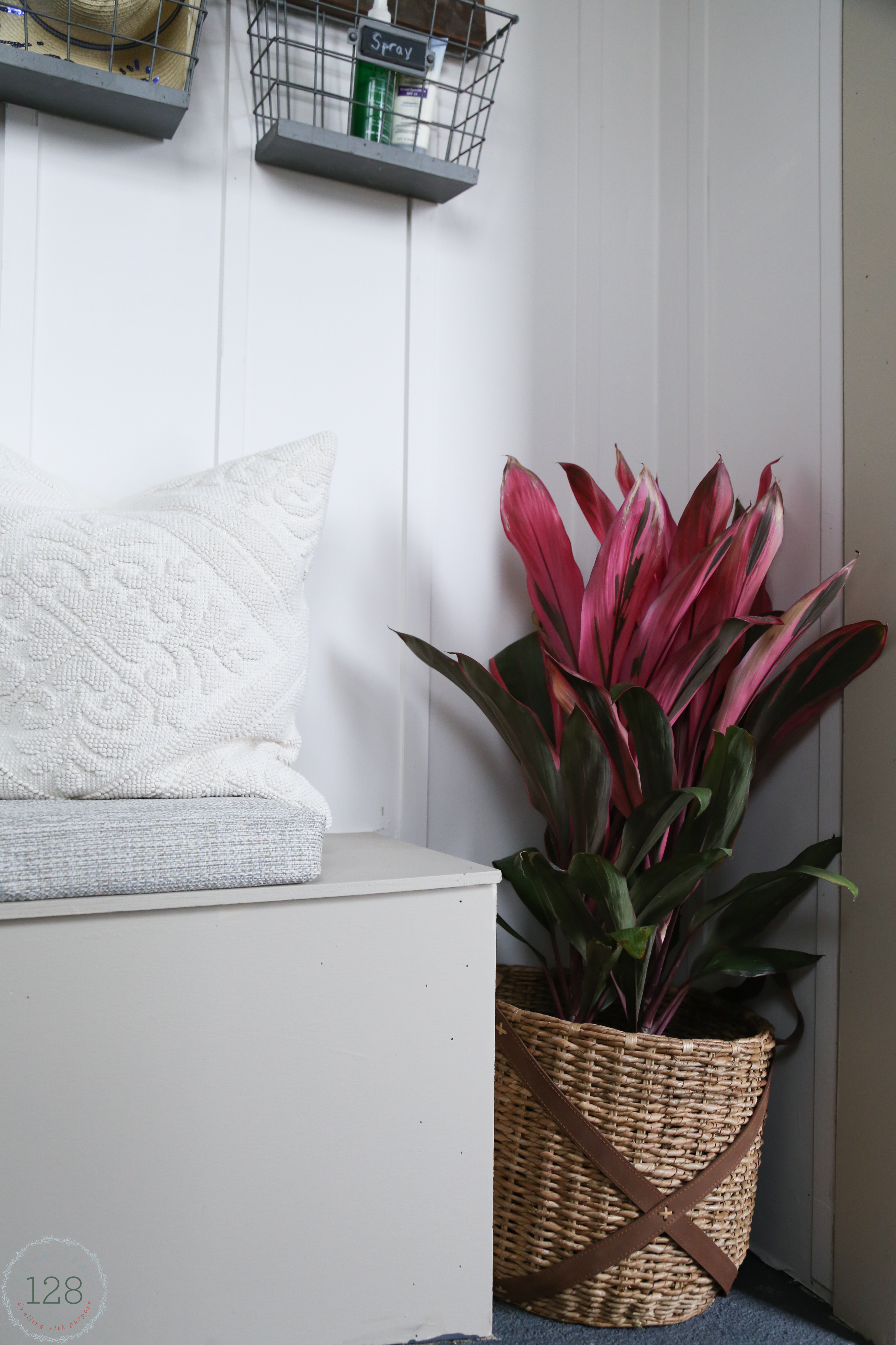 White batten walls, upholstered bench seating and a pink tropical plant in the mudroom.