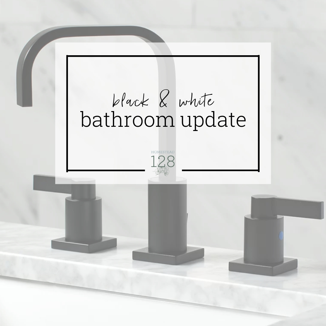 Black And White Bathroom Updates